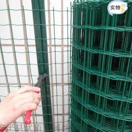 綠色塑膠鐵絲網圍欄 養雞鐵絲網 養殖鐵絲網 荷蘭網