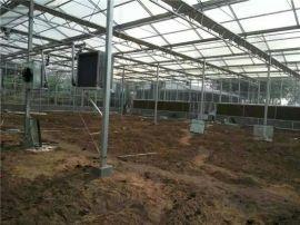 玻璃溫室工程,玻璃連棟智慧溫室,智慧玻璃溫室