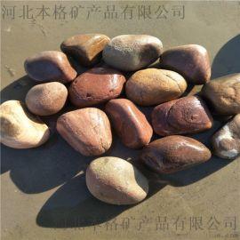 廊坊鹅卵石厂家 本格鹅卵石多少钱一吨