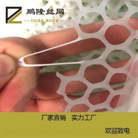 鹏隆家禽养殖塑料网 水产养殖网 塑料平网
