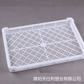 山东天仕利塑料单冻盘 优质冷库用速冻盘