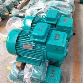 YZR  YZ系列电动机 / 冶金起重机专用电机