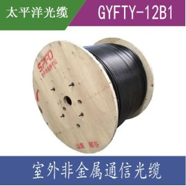 太平洋光缆 GYFTY-12B1.3  12/24芯单模光纤 非金属室外光缆 直销