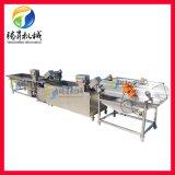涡流清洗柑橘沥水生产线 涡流连续式果蔬清洗流水线