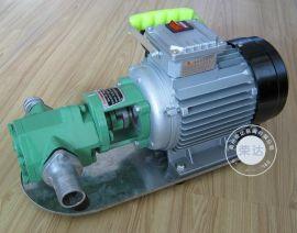 WCB齿轮泵 手提式齿轮油泵 不锈钢齿轮泵 防爆齿轮油泵