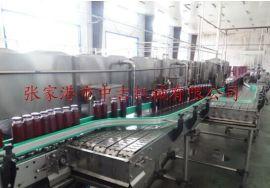 张家港饮料灌装机厂家 张家港灌装机厂家