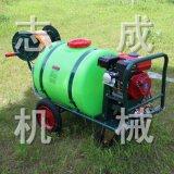 直供160L推车式汽油打药机农用高压喷雾机