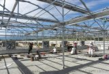 温室大棚农业大棚阳光房  环保保温阳光板