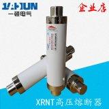 高压高分断限流熔断器XRNT1-10/-80A100A陶瓷保险管12KV