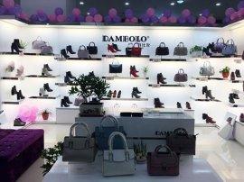 """丹比奴品牌鞋包发挥实体店优势,占据快时尚市场""""半壁江山"""""""