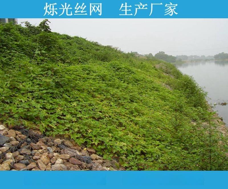 六安低碳钢丝绿滨垫 灾情治理防洪绿滨垫
