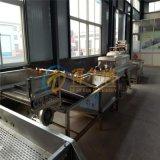 气泡袋子清洗机 DR-5隧道清洗设备 蔬菜清洗机