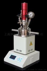 实验室微型高温高压反应釜