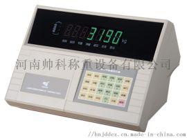 数字仪表 耀华DS3