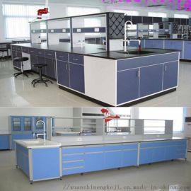 實驗臺廠家 中央全鋼實驗臺 邊臺 通風櫃 醫藥櫃