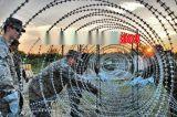供應監獄防翻越隔離網/蛇腹形刺絲滾籠鋼網牆