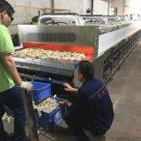 棉布脫水碎布烘乾機 廣東專業廠家定製碎布烘乾機