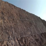 高铁边坡防护网.高铁护坡防护网.高铁两侧落石防护网