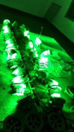 广万达牌GS-ZSD24W公园亮化专用灯具质保3年