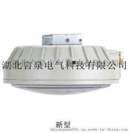 eYD51-32W防爆环形荧光灯