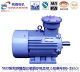 WNM電機/皖南電機/YB3系列高效防爆電機(機座號:80~160)/節能電機/高效電機/高效防爆電機/隔爆電機