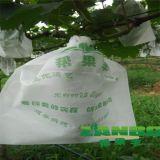 葡萄袋選幫果豐防鳥啄防水無紡布葡萄專用套袋