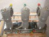 ZW32-12/630户外高压真空断路器电动型