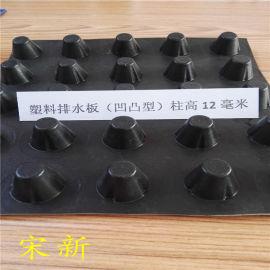 20mm塑料排水板厂家