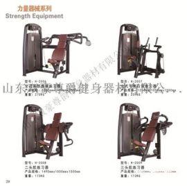 双豪尊爵力量器材二头机弯举椅坐姿胸部推举练习器