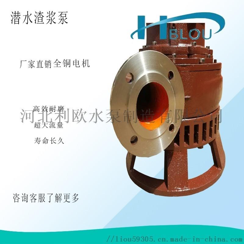 利欧ZJQ潜水渣浆泵40ZJQ-21-9.5-B