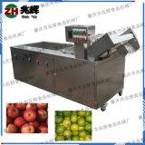 氣泡臭氧清洗洗菜機器 蔬果自動出料葉菜農殘清除機