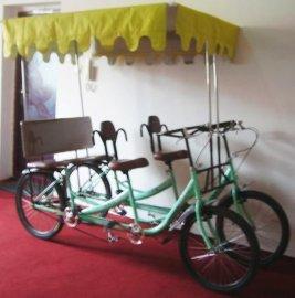 新型带蓬四人四轮自行车