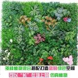 仿真植物单枝绿植 绿色环保植物墙配件搭配仿真装饰塑胶绿萝单枝