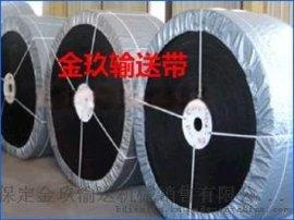 输送带生产厂家专业生产销售B1000尼龙输送带耐磨输送带  金玖输送机械有限公司