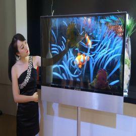 厂家直销65寸透明液晶电视/透明电视/透明展示柜电视