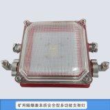 【支架燈】礦用隔爆兼本安型支架燈