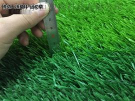 足球场人造草坪施工幼儿园人造草皮地毯直销