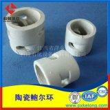 硫酸項目用優質陶瓷鮑爾環DN50瓷質上秞鮑爾環填料