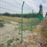 耐腐蝕浸塑綠色鐵絲圍欄網A吉林綠色鐵絲圍欄網廠家