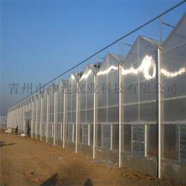 浙江智能阳光板温室厂家 连栋阳光板温室大棚工程