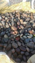 山东天然鹅卵石道路原材料供应