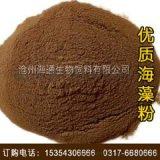 供应天然海藻粉,海带粉饲料,饲料原料,饲料添加剂