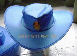 折叠帽 (2)