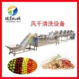 蔬菜清洗机 果蔬风干机 净菜加工设备生产线