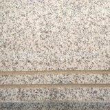 長期批發 磨光面環保白麻石材 白麻光面樓梯批發 品質保證