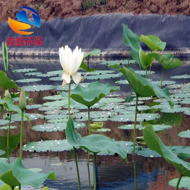 藕池防水橡膠布 防滲土工布 土工膜 HDPE土工膜 蓮藕種植專用防水