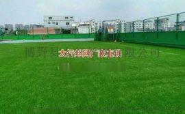 直销人造草坪塑料假草坪幼儿园环保绿色人造草