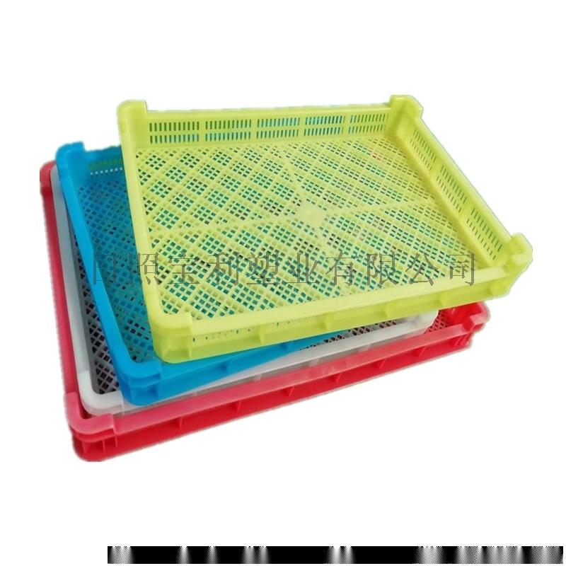 日照宝利塑业塑料单冻盘塑料晾晒盘