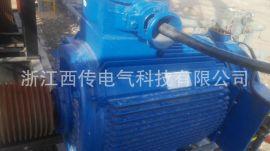 天平式游梁抽油机用电机及控制系统