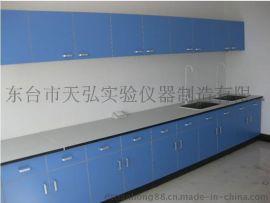 镇江实验室操作台 镇江实验室通风柜厂家